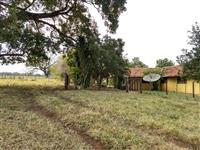 Fazenda Jaraguari-MS