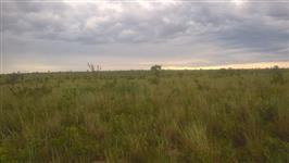 Porcuro Fazenda para arrendar Tocantins