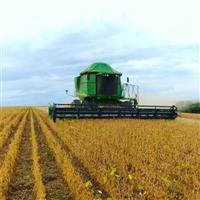 Terceirização de colheita