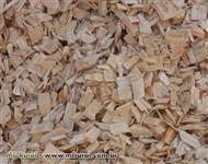 Compro cavaco de Eucalipto e Pinus sem casca