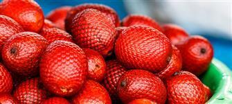 Buriti - Fruto Inteiro