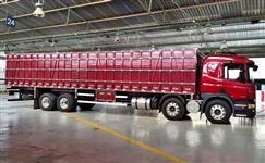 Caminhão Scania p310 8x2 ano 18