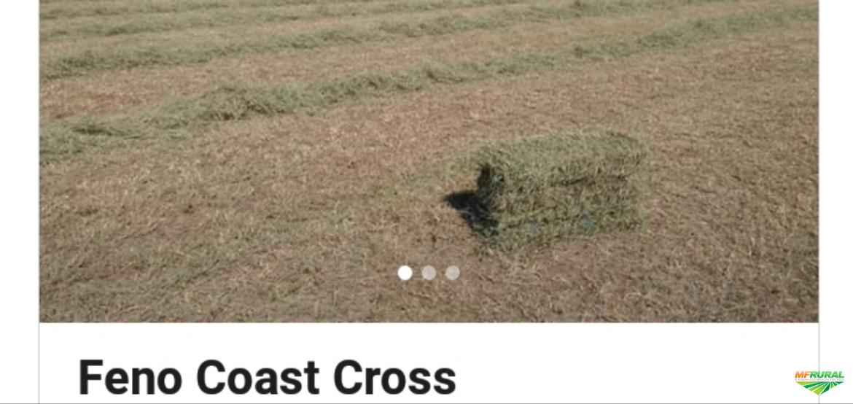Feno Coast Cross