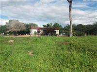 Fazenda para reserva (no artigo PRA) 18.400he.