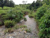 fazenda há 135 km de Goiânia - RICA DE ÁGUA