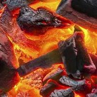 Carvão Carvoliptus 100% eucalipto