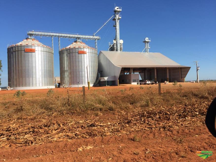 Atuando no setor de armazenagem de grãos.