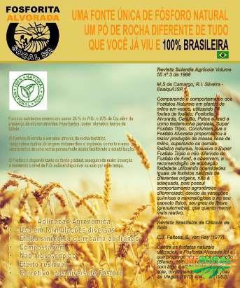 FOSFATO NATURAL SEDIMENTAR ALVORADA/SOCAL