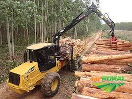 Maquinas para colheita  florestal