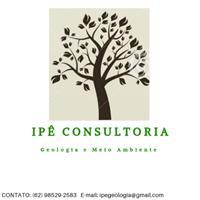 Ipê Consultoria -