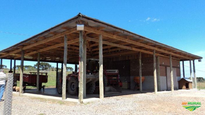 Fazenda interior de Caxias do Sul RS