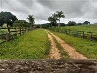 Vendo Fazenda Beira do Rio Maranhão em Goiás