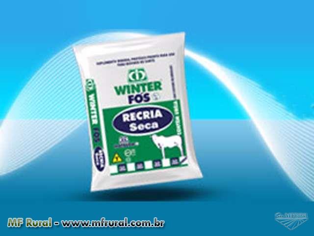 Winter Fós Recria Seca - MATSUDA