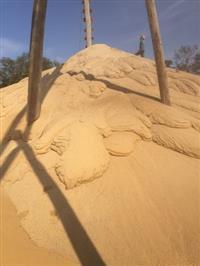 Porto de areia de quartzo, extração 1300 m³ dia