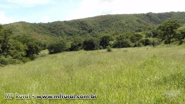 Fazenda Pasto dos Bois 125 km de Unaí e a 20 km de Uruana de Minas
