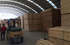 Compro madeiras serradas de pinus e Eucalipto Urgente