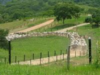 Fazenda EXCELENTE - SUPER INFRAESTRUTURA