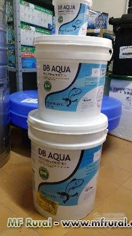 Probiótico e Prebiótico DB Aqua, para eliminar Algas, Lodo, Amônia dos tanques