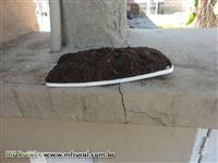 Terra Preta para jardinagem