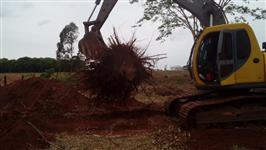 Locação de Escavadeira Hidraulica