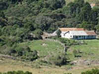 Linda Fazenda com 800 hectares em São Joaquim/SC-Ótima para Pecuária