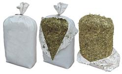 Silagem de milho alto padrão 100% de grãos, em sacos plásticos selados de 30 kg