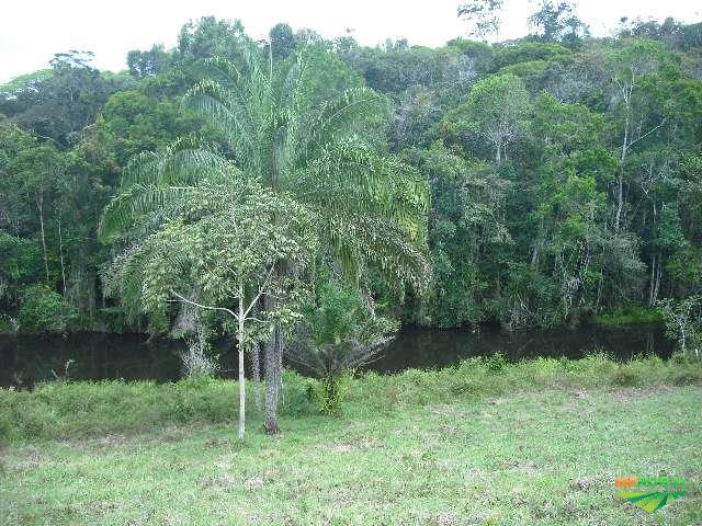 Fazenda 92 hectares em Camamu