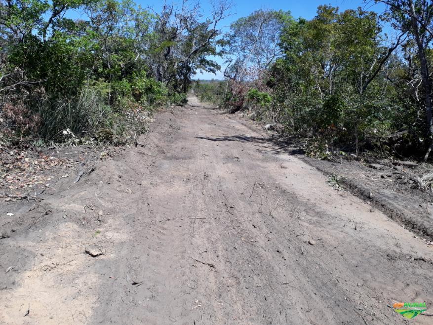 Fazenda Paraiso das Aguas - Lizarda/TO, 987,3 hectares