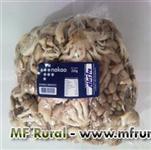 Cogumelos Shimeji branco e preto, champignon, shiitake, portobelo, eryngui