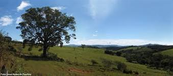 Linha de Credito P/ Fazendas,Sitios,Terrenos e outros pre aprovada  80 a 2.milh