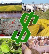 Credito pré-aprovado p/ Investimento Diversos ou para compra equipamento e Maquinas agrícolas
