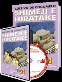 Curso Cultivo Cogumelo: Shimeji e Hiratake