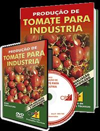Curso Produção de Tomate para Indústria