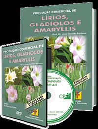 Curso Produção Comercial de Lírios, Gladíolos e Amaryllis