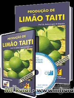 Curso Produção de Limão Taiti