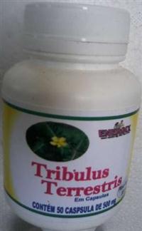 TRIBULUS TERRESTRIS EM CAPSULAS -  Frte gratis na compra ACIMA DE 5 POTES