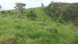 Sitio no Vale do Ribeira pastagem bem formada, com capim braqueara, comporta 35 vacas o ano todo...