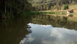 Fazenda no Vale do Ribeira com mangueira completa, Brete, balança, comporta 400 vacas, rios ...