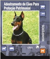 DVD Adestramento de Cães Para Proteção Patrimonial
