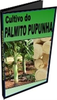 Cultivo do Palmito - Pupunha - DVD