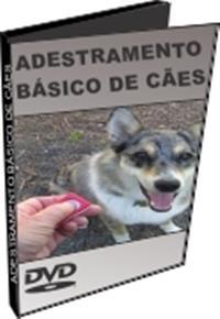 Adestramento Básico de Cães - DVD