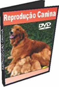 Reprodução Canina - Monta Natural e Inseminação Artificial