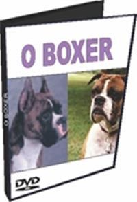 O Boxer - DVD
