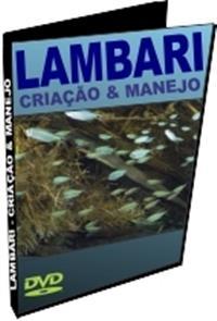 Como Criar Lambari - um negócio lucrativo - DVD