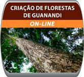 Curso a Distância de Criação de Floresta de Guanandi