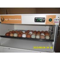 Chocadeira 100 ovos com viragem Automática,termostato Digital