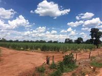 Fazenda Xatão, 96,8 Hectares próximo ao Rio Grande