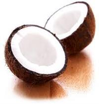 Compro coco seco para indústria