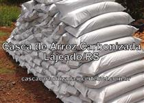 Casca de arroz carbonizada