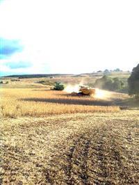 Fazenda Agropecuária com 625 hectares